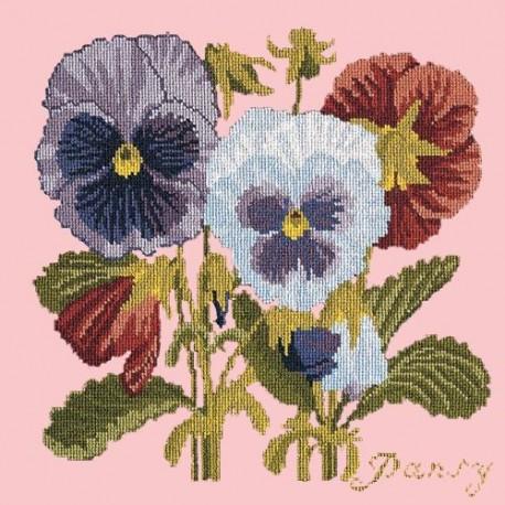 Elizabeth Bradley, Botanical Garden, PANSY - 16x16 pollici