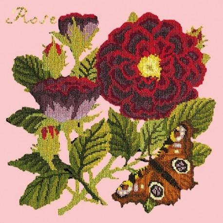 Elizabeth Bradley, Botanical Garden, ROSE - 16x16 pollici