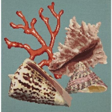 Elizabeth Bradley, Shells, RED CORAL - 16x16 pollici
