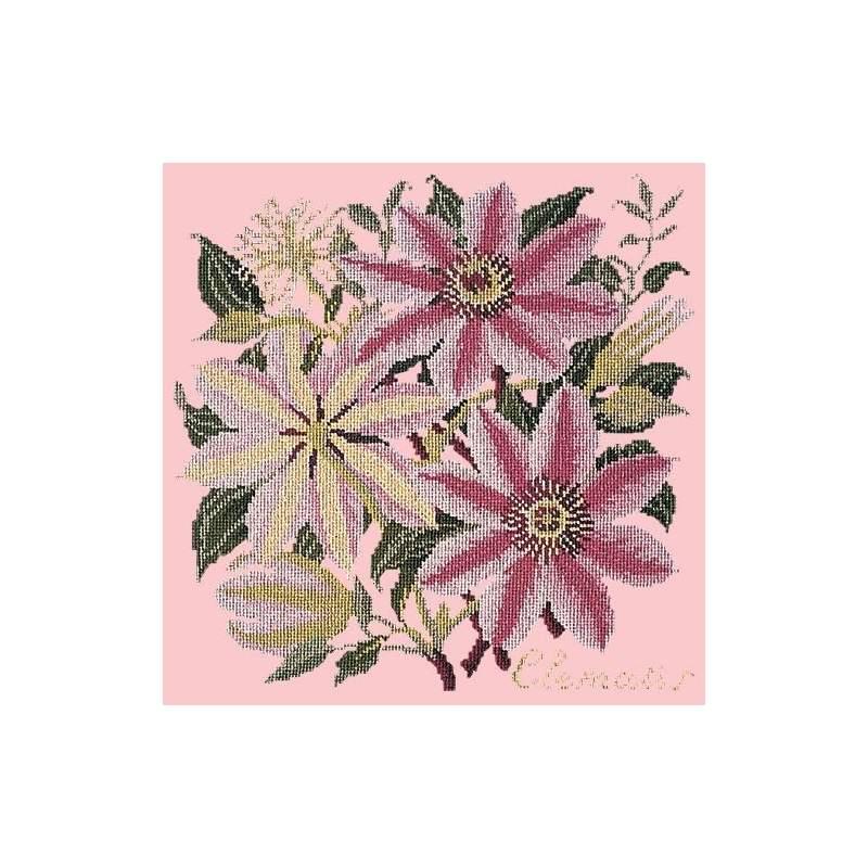 Elizabeth Bradley, Climbing Flower, CLEMATIS - 16x16 pollici Elizabeth Bradley - 2