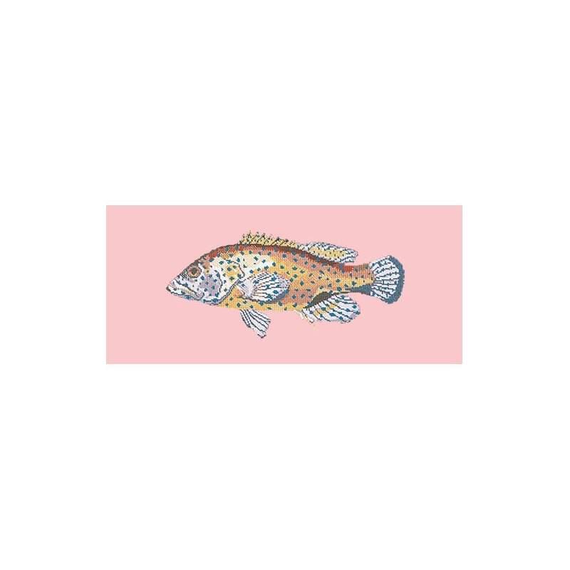 Elizabeth Bradley, The Fishes, VERMILION SEABASS - 28x11 pollici Elizabeth Bradley - 2
