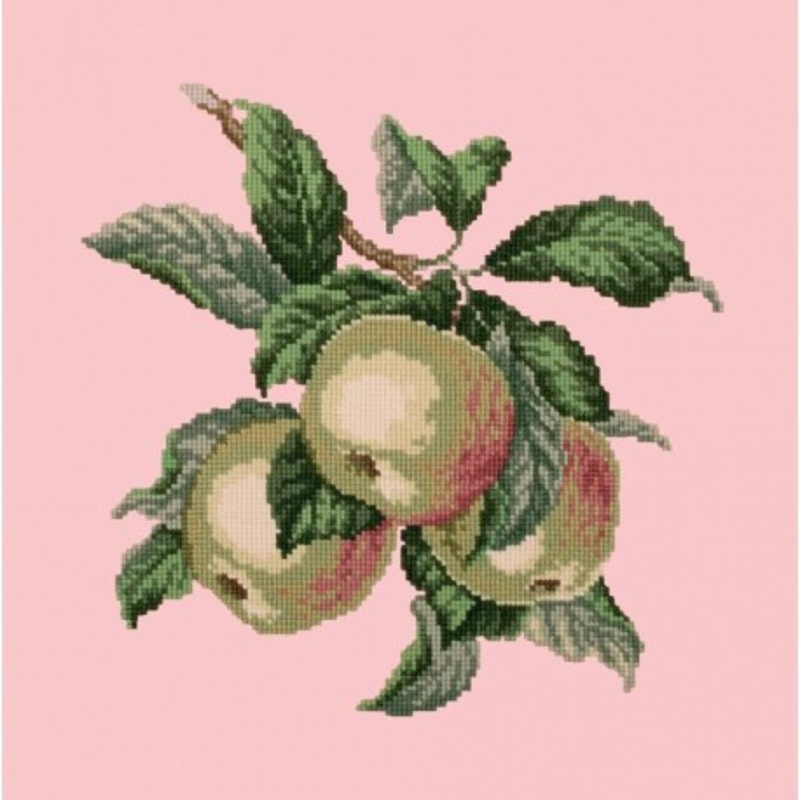 Elizabeth Bradley, Botanical Fruits, APPLES - 16x16 pollici Elizabeth Bradley - 2