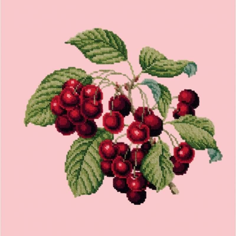 Elizabeth Bradley, Botanical Fruits, CHERRIES - 16x16 pollici Elizabeth Bradley - 2