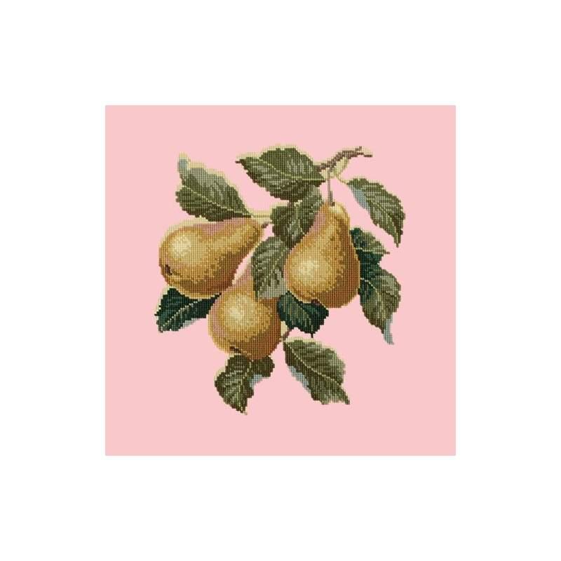 Elizabeth Bradley, Botanical Fruits, PEARS - 16x16 pollici