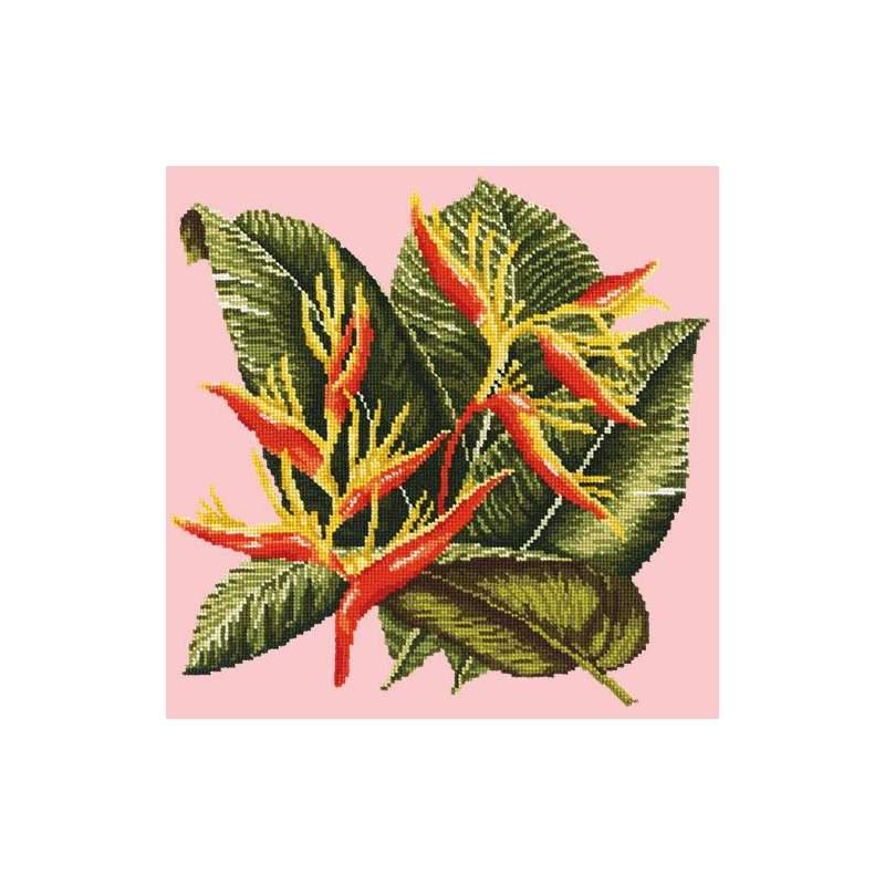 Elizabeth Bradley, Tropicals, HELICONIA - 16x16 pollici
