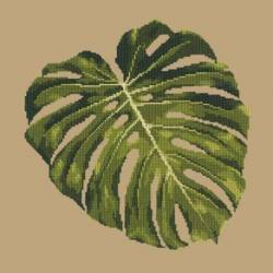 Elizabeth Bradley, Tropicals, MONSTERA LEAF - 16x16 pollici