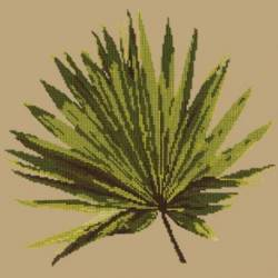 Elizabeth Bradley, Tropicals, FAN PALM LEAF - 16x16 pollici
