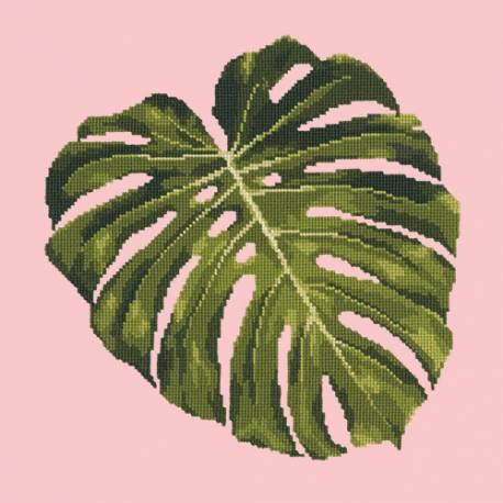 Elizabeth Bradley, Tropicals, MONSTERA LEAF - 16x16 pollic