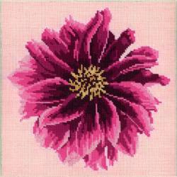 Elizabeth Bradley, Blooms, DAHLIA - 12x12 pollici