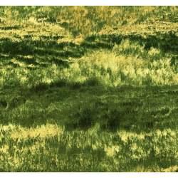 South Sea Import, Tessuto Verde Natura