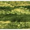 South Sea Import Complements, Tessuto beige con foglie e viticci