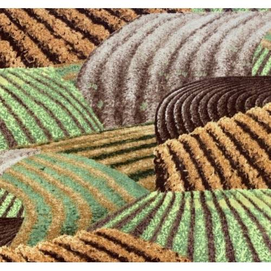 Wilmington Prints Life on the Farm by John Sloane, Tessuto Marrone Verde Campo Coltivato