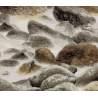 P&B Textiles Mendocino, Tessuto Beige Grigio Marrone Paesaggio con Sassi