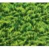 Michel Miller Lawn, Tessuto Verde con Erba