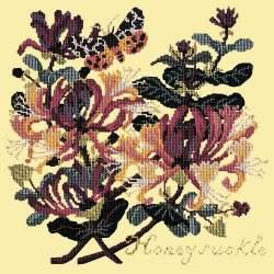 Elizabeth Bradley, Climbing Flower, HONEYSUCKLE - 16x16 pollici