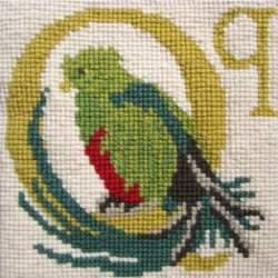 Elizabeth Bradley, Animal Alphabet, Q - QUETZAL - 6x6 pollici