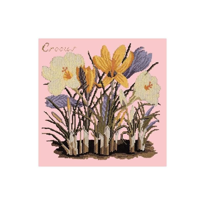 Elizabeth Bradley, Botanical Garden, CROCUS - 16x16 pollici Elizabeth Bradley - 2